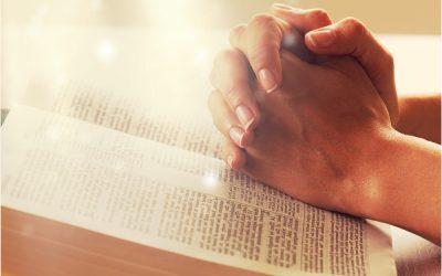 Jennifer Allen's Annual Holiday Prayer